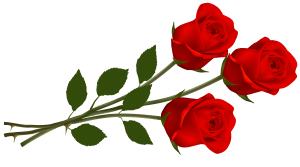 Large_Red_Roses_PNG_Clipart