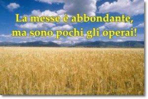 LA MESSE E' ABBONDANTE, MA SONO POCHI GLI OPERAI Lc. 10,1-12.17-20