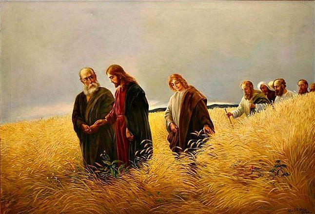 Gesù è il Signore del sabato